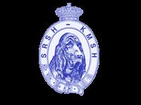 Logo SRSH