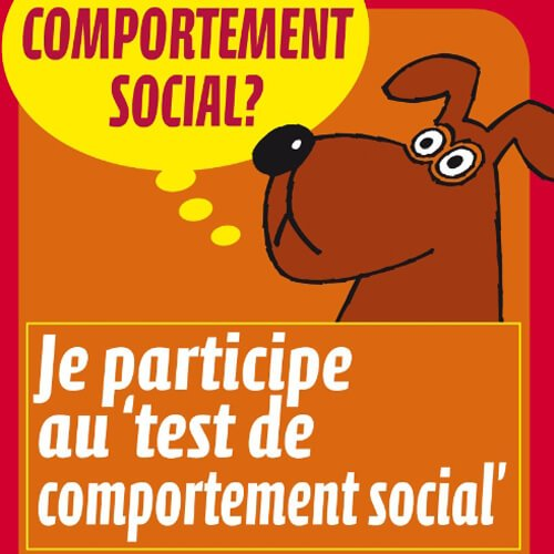Affiche du test de comportement social St-Hubert